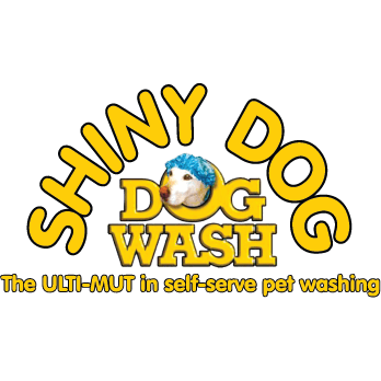 Shiny car car wash and shiny dog dog wash solutioingenieria Image collections
